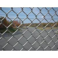 China Vinyl Coated Chain Link Fence , Garden Fence Panels With 0.5--5.0m Width on sale