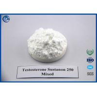 Buy cheap Bodybuilding Sustanon 250 Injection, Safe Testosterone Sustanon 250Mixed Blend from wholesalers