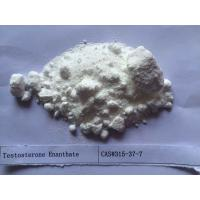 Buy cheap White Testosterone Steroids Testosterone Enanthate 250 CAS 315-37-7 from wholesalers