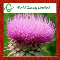 Buy cheap High Quality Milk Thistle Extract Silymarin 80%,Silybin 30% HPLC from wholesalers