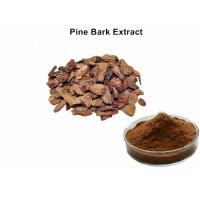 Buy cheap 95% Proanthocyanidins Anthocyanin Extract Powder Pine Bark Extract Preventing Angiocardiopathy from wholesalers