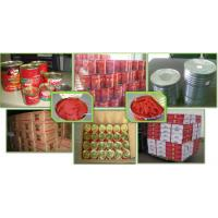 Buy cheap Chinese Canned Tomato paste/Tomato paste in tin can/Tomato jam/tomato ketchup/tomato sauce from wholesalers