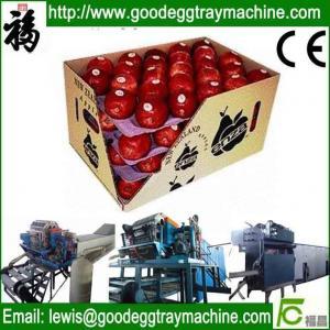 China apple fruit tray processing machinery on sale