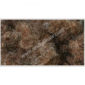 Horse Hair Upholstery Horse Hair Upholstery Images