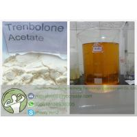 Buy cheap Tren A Trenbolone Powder Trenbolone Acetate Revalor-H 10161-34-9 For Muscle Building from wholesalers