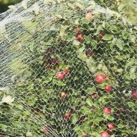 Buy cheap Commercial Bird Netting,10ft/25ft W product