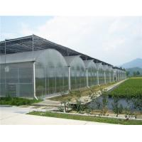 China Pc Sheet / Polycarbonate Sheet Greenhouse For Modern Organic Agriculture on sale
