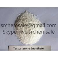 China Testosterone Enanthate Steroids CAS 315-37-7 Test E Bodybuilding Supplements Steroids on sale