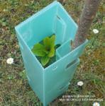 Buy cheap PP multi wall corrugated plastic correx tree guards / corriflute / Corflute / Coroplast / Correx Tree Protector from wholesalers