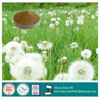 Buy cheap GMP 100% Natural Dandelion Extract from wholesalers