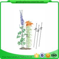 Buy cheap Single Grow Garden Plant Supports / Spiral Plant Support 4 Z - Rings from wholesalers