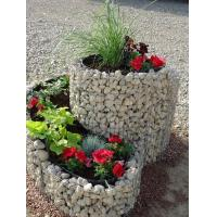 Buy cheap Ornate Welded Gabion Raised Garden Beds in Spiral/Triple Rings for Flowers & Vegetables from wholesalers
