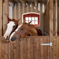 Buy cheap Internal Portable Horse Stall Panels Easy Installation Customized Brand from wholesalers