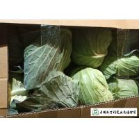 Buy cheap Wholesaler All Season Cabbage Green Color Rich In Vitamin C Easy Stockpile from wholesalers