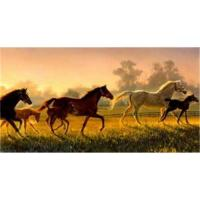 Buy cheap Custom Oil  paintings from wholesalers