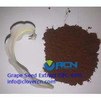 Buy cheap ACNS00199 Grape Seed Extract   100% Pure   Xi'an   Clovernutrition from wholesalers