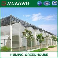Buy cheap PC Sheet Agriculture Plastic Film Glass Sheet Multi-Span Polycarbonate Greenhouse from wholesalers