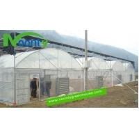 Buy cheap Gothic Arch Greenhouse from wholesalers