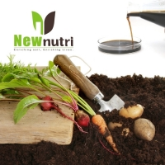 Buy cheap Brown NPK 100-400-100 Seaweed Extract Liquid Fertilizer from wholesalers