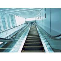 Buy cheap Frosted Bevel Edge Flat Tempered Glass Acid Etched For Elevator , EN from wholesalers