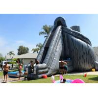 Buy cheap Giant Inflatable Slide 33ft High Hurricane Water Slide Inflatables For Adults from Wholesalers