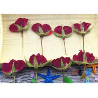 Buy cheap Red Dried Rose Petals Crafts , Dried Rose Buds Crafts For Cell Phone Case from wholesalers