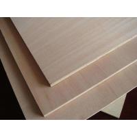 Buy cheap Colored Eucalyptus Commercial Grade Plywood With Okoume Faced Standard Size from wholesalers