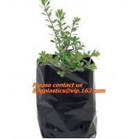 Buy cheap Poly Planter, Grow Bag, garden bags, grow bags, hanging plant bags, planter, Plastic plan garden bags, garden supply pac from wholesalers