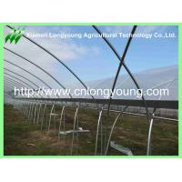 Buy cheap Economical Gutter-connected Plastics Greenhouse Agricultural from wholesalers