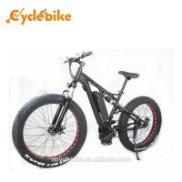 Buy cheap 48 V 1000w Mid Drive Motor Fat Tire Powerful Electric Bike For Ladies , No Foldable from wholesalers