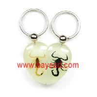 Buy cheap real scorpion in resin amber key chains,scorpion key chains,scorpion keyring,very cool from wholesalers