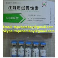 Buy cheap 99% purity HCG 5000iu/vail bodybuilding fat-burning fat-cut fat lose CAS NO.9002-61-3 from wholesalers