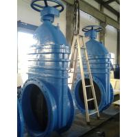 China Iron coating EPDM or NBR Resilient seated Gate Valve PN16 600mm on sale