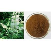 Buy cheap Black Cohosh Extract, Triterpenoid Saponins, Triterpene Glycosides 2.5%-10%  from wholesalers