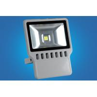 Buy cheap Outdoor COB, Bridgelux / Epistar LED Flood Light With High Pureness Aluminum from wholesalers
