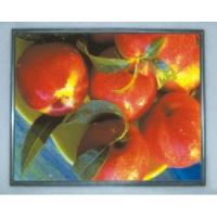 Buy cheap LTM170ET01 17\'\' Samsung LCD Panel  from wholesalers