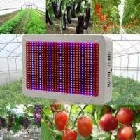 Buy cheap High Tech Dimmable LED Grow Lights Indoor With 50~60Hz Frequency product
