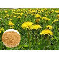 Buy cheap Powerful Antioxidant Natural Dietary Supplements Brown Dandelion Root Extract Powder from wholesalers
