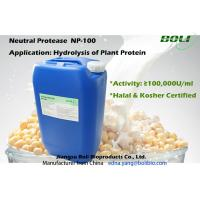 Buy cheap Neutral Protease For Hydrolysis Of Plant Protein , Industrial Production Of Protease Enzyme from wholesalers