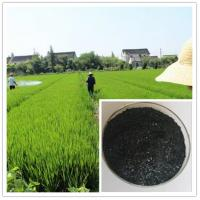Buy cheap best plant food for all plants and tree:seaweed extract fertilizer flake from wholesalers