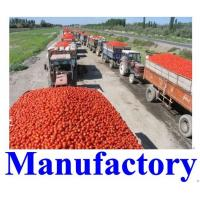 Buy cheap Tomato Paste in Drum 36-38; 28-30; 30-32 from wholesalers
