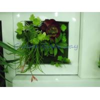 Buy cheap GGW-GW01 30cm x 30cm x 7cm home and office decoration Artificial Green Wall from wholesalers