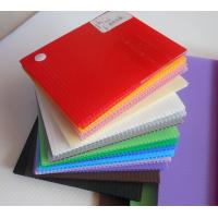 Buy cheap Impact Resistance Correx Plastic Sheets Danpla sheet For Construction Protection from wholesalers