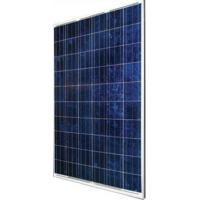Buy cheap Rugged Design Polycrystalline Silicon Solar Panel 240W Withstands High Wind Pressure from wholesalers