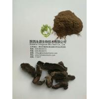 Buy cheap High Quality Natural Radix Rehmanniae Extract,Di huang root powder Extract from wholesalers