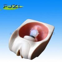 Buy cheap Female Contraception Practice Model product