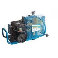 Buy cheap Air breathing apparatus inflator pump from wholesalers