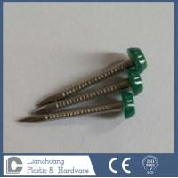 Buy cheap 25mm Stainless Steel Plastic Head Nails , A4 Plastic Head Pins for construction , Cladding from wholesalers