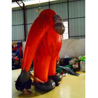Buy cheap Event / Show Inflatable Costumes Various Design With Beautiful Digital Printing from wholesalers