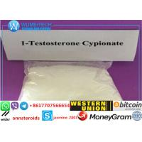 Buy cheap 99% Purity Growth Muscle Testosterone Cypionate Steroid Powder 58-20-8 USA from wholesalers